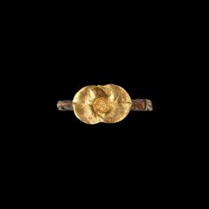 Χειροποίητο Δαχτυλίδι σε Ασήμι και Χρυσό